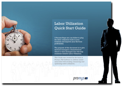 Labor Utilization Quick Start Guide